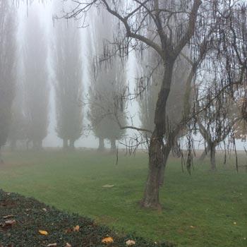 Fog-in-Mantova-italy